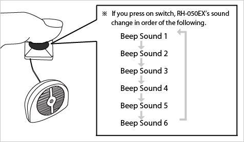 RH-050 Details 3