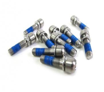 FSA Ti Stem Bolt M5x18 BO0700 Titanium